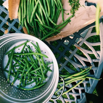 Fresh string beans from the local green grocer that we topped and tailed by hand. Something very rustic and authentic about the connection to the produce. We slow cooked these with thinly sliced onions, a few small tomatoes with a dash of salt and olive oil. That's it!